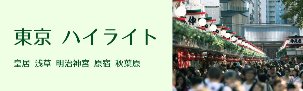 東京ハイライト研修
