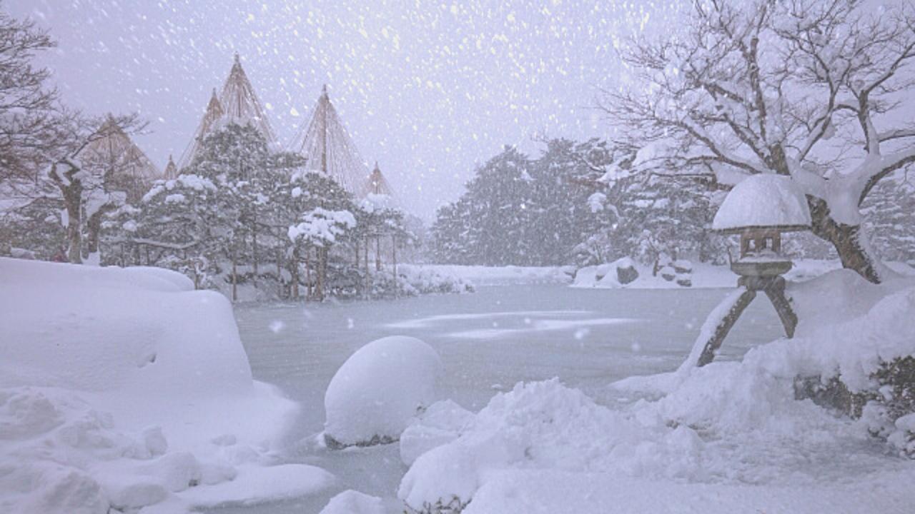 JapanWonderGuide庭園4